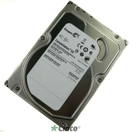 Seagate Constellation 1TB