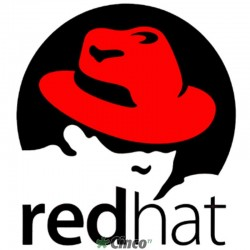 Assinatura Red Hat Enterprise Linux Server - Padrão, RH00004